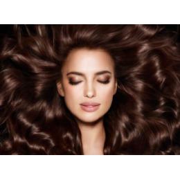 L'Oreal Paris LOREAL ELSEVE Шампунь для волос Роскошь 6 масел 250мл