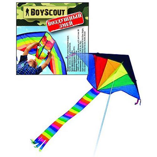 BOYSCOUT BOYSCOUT Воздушный змей 140х68см/шнур 30 метров/48